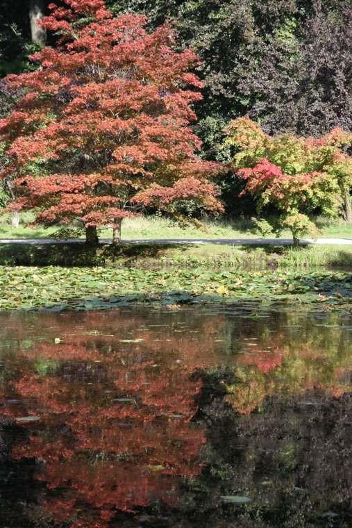 008_0030_16 Sept 2011_Gartenfest_Schlosspark
