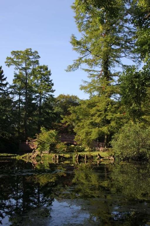 005_0017_16 Sept 2011_Gartenfest_Schlosspark
