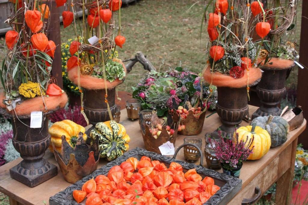 128_0184_19 Sept 2009_Gartenfest_Aussteller