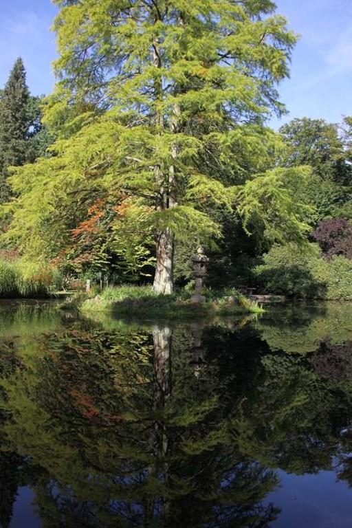 015_0057_16 Sept 2011_Gartenfest_Schlosspark