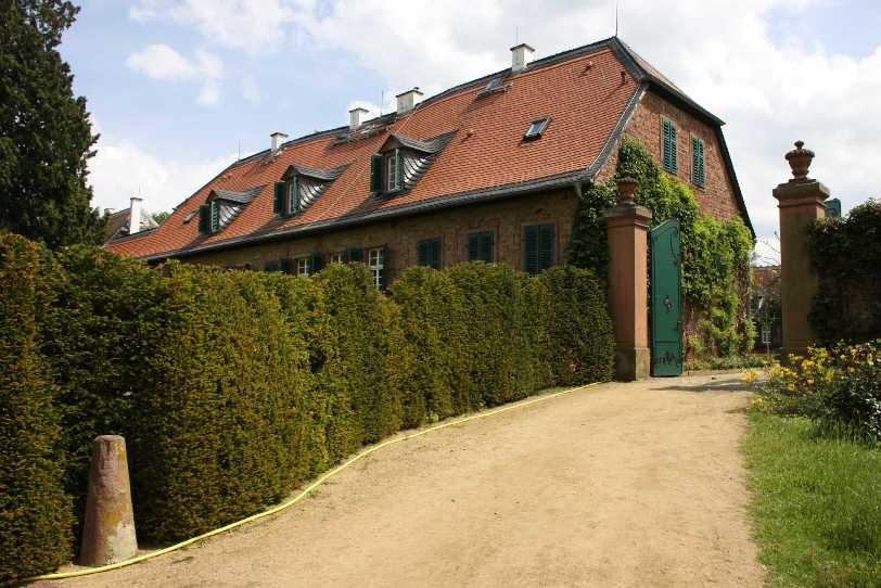 0168_19 Mai 2012_Rhododendron_Schloss Wolfsgarten