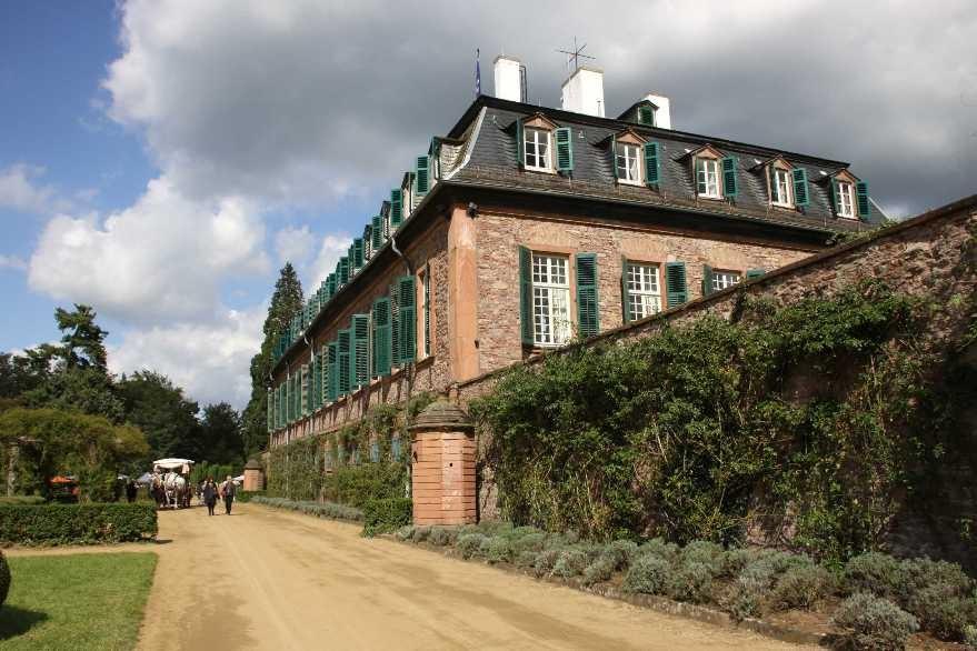 176_0291_17 Sept 2010_Gartenfest_Schloss Wolfsgarten_Percheron-Pferde