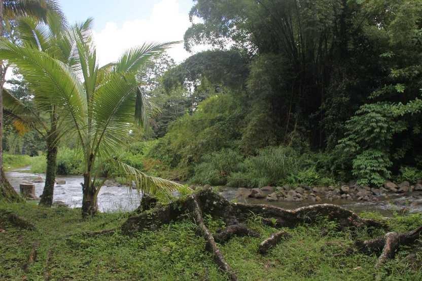 2389_29 NOV 2013_Martinique_Allradabenteuer