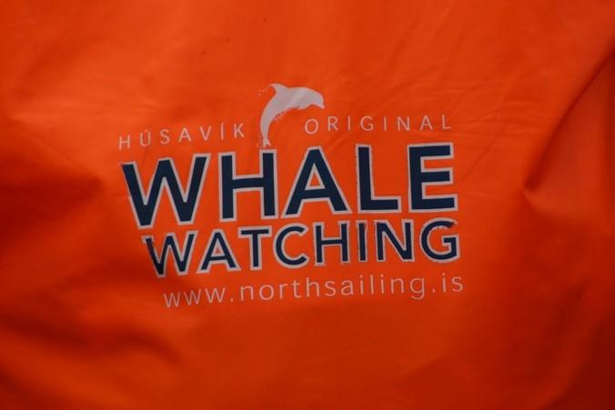 Bild 0761 - Island / Husavik, auf dem Whale Watching Boot