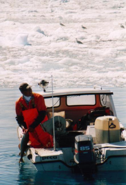 Fischer im Ilulissat-Eisfjord / Grönland