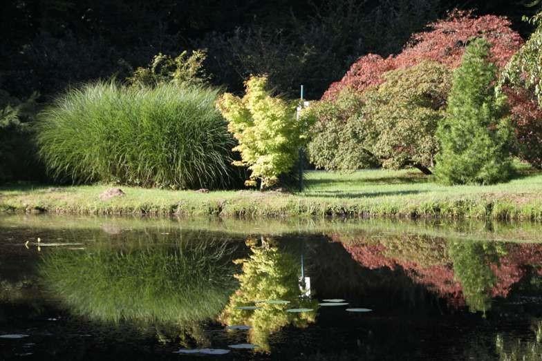 011_0041_16 Sept 2011_Gartenfest_Schlosspark