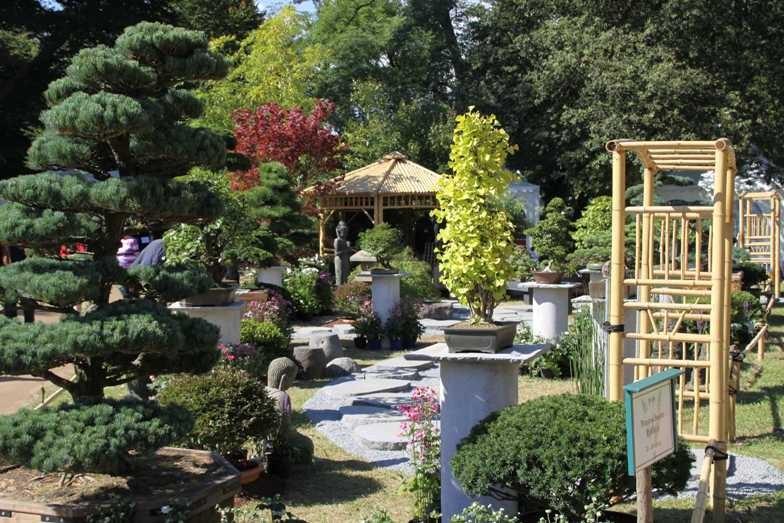 092_0327_17 Sept 2010_Gartenfest_Aussteller_Bonsai