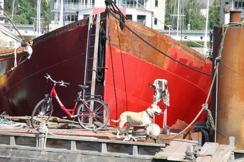 0210_30 Juli 2011_Flensburg_Hafen_Gastlieger