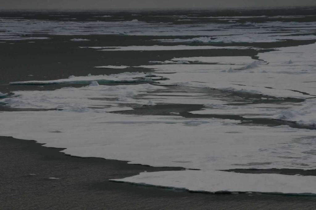 Bild 1264 - Spitzbergen, Packeisgrenze