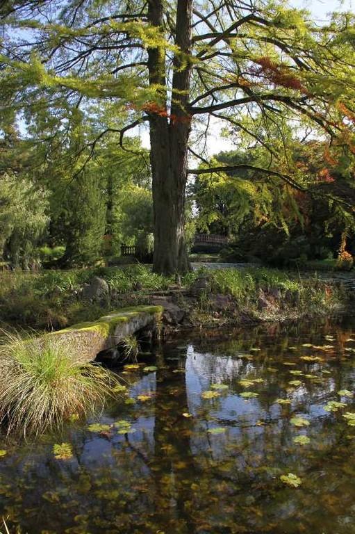 012_0036_17 Sept 2010_Gartenfest_Schlosspark