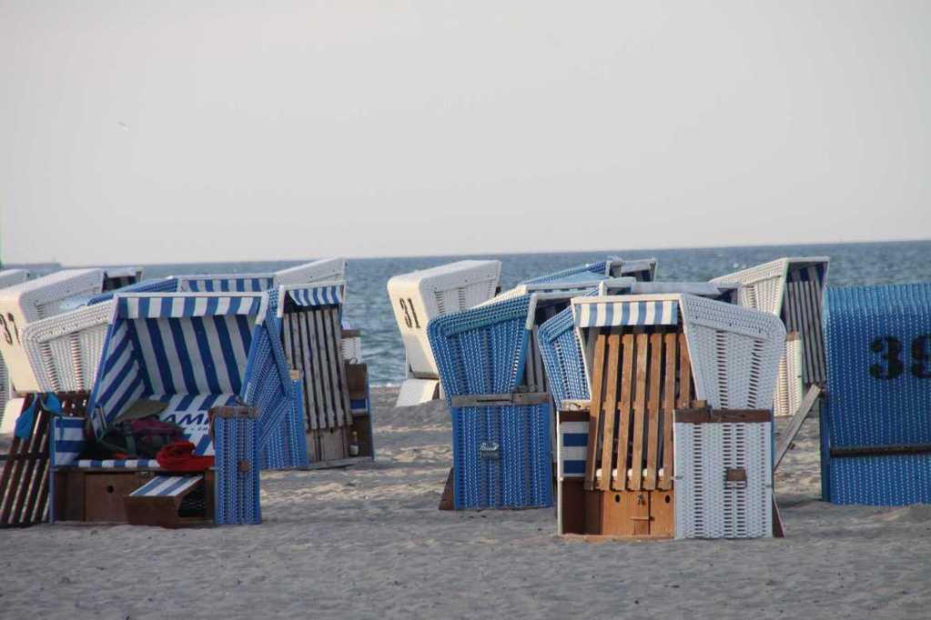 0051_02 Aug 2011_Damp_Strand