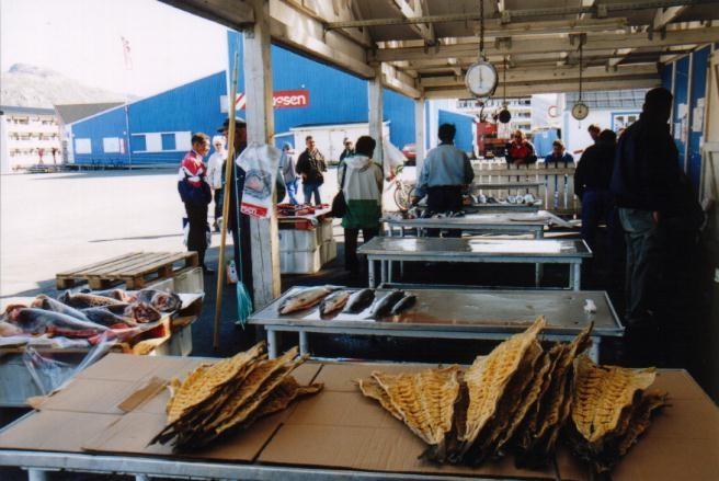 Fischmarkt in Sisimuit / Grönland