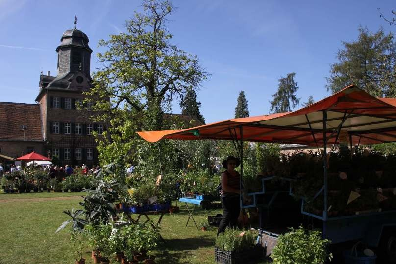097_0298_16 Sept 2011_Gartenfest_Schloss Wolfsgarten_Aussteller