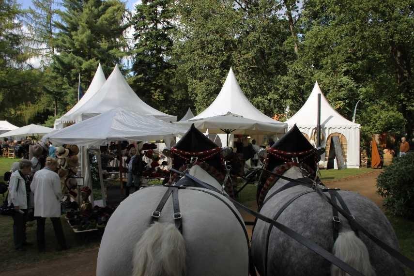 168_0259_17 Sept 2010_Gartenfest_Aussteller_Percheron-Pferde