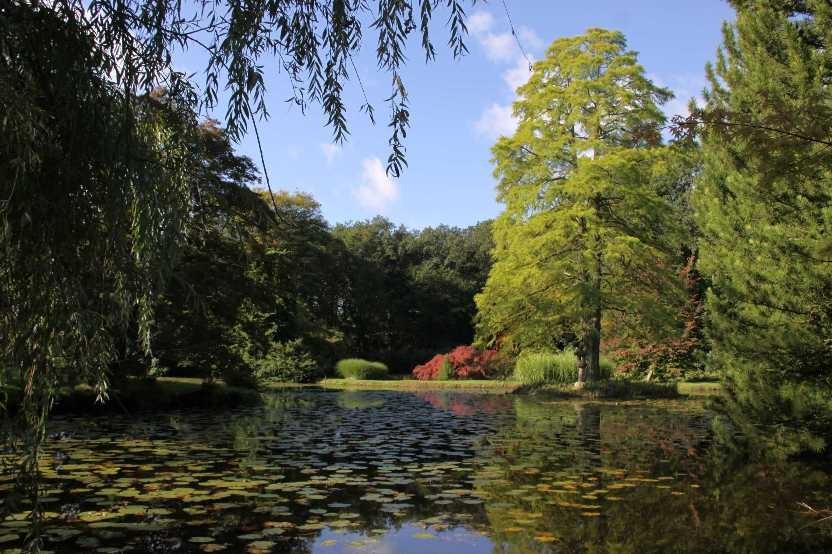 008_0029_17 Sept 2010_Gartenfest_Schlosspark