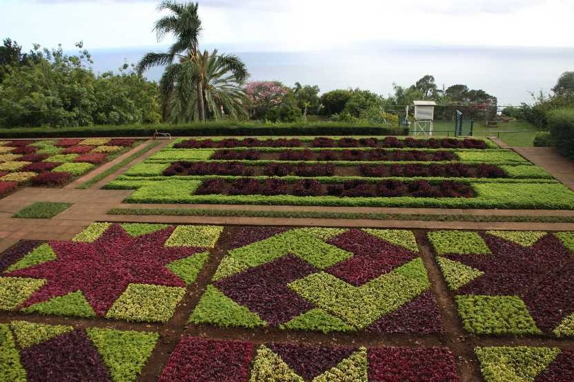 1276_14 Okt 2010_Madeira_Monte_Jardim Botanico