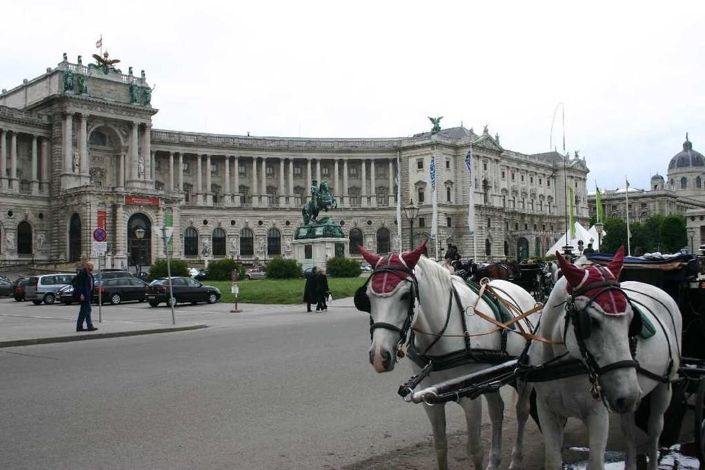 0446_22 Mai 08_Wien_Neue Hofburg_Fiaker