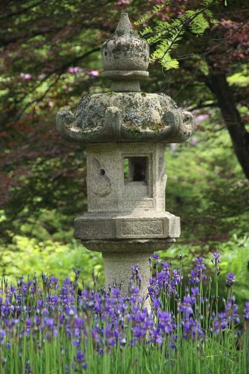 0129_19 Mai 2012_Rhododendron_Schlosspark_Vogelhaus_Iris