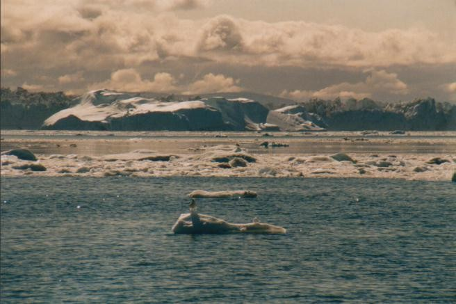 Eisberge im Ilulissat-Eisfjord / Grönland