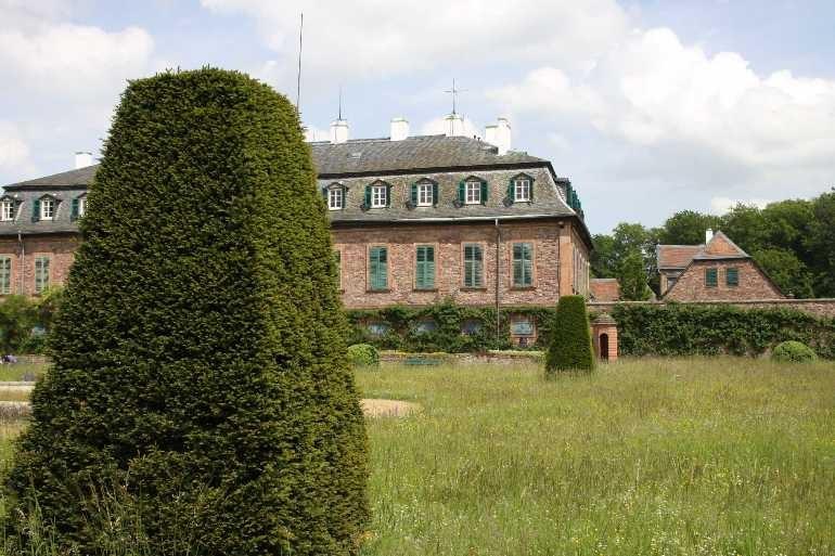 0179_19 Mai 2012_Rhododendron_Schloss Wolfsgarten