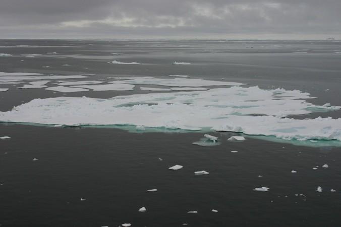 Bild 1250 - Spitzbergen, Packeisgrenze