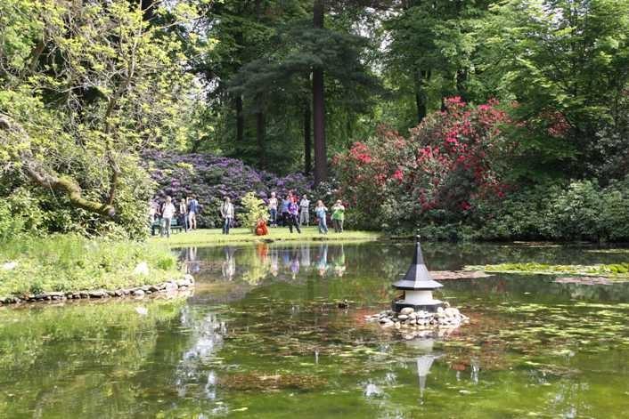 0153_19 Mai 2012_Rhododendron_Schlosspark_Teich