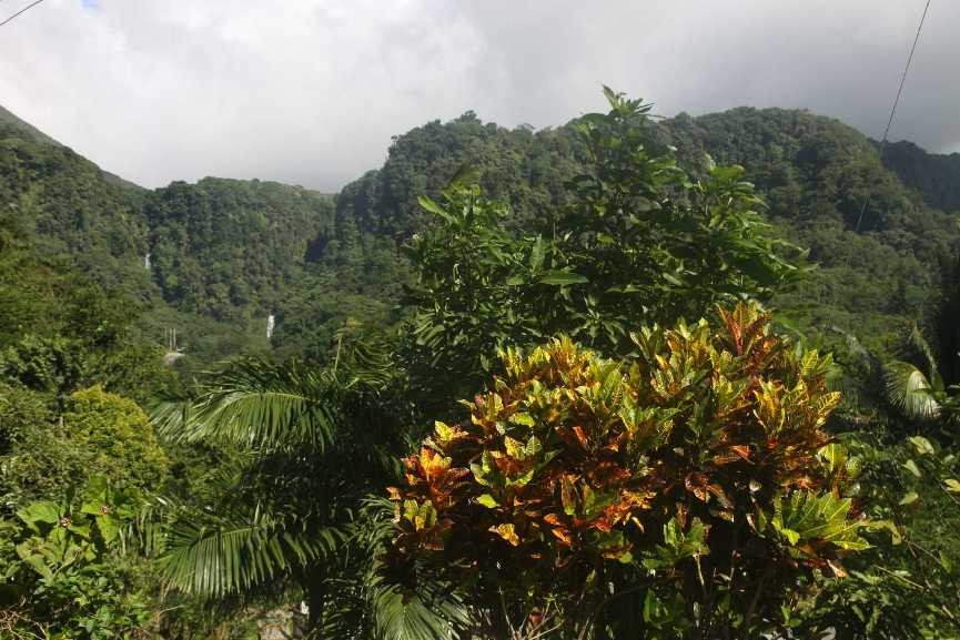 0904_25 NOV 2013_Dominica_Trafalgar Falls