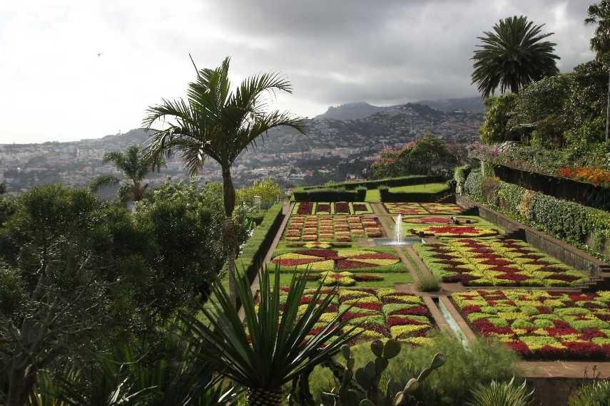 1253_14 Okt 2010_Madeira_Monte_Jardim Botanico