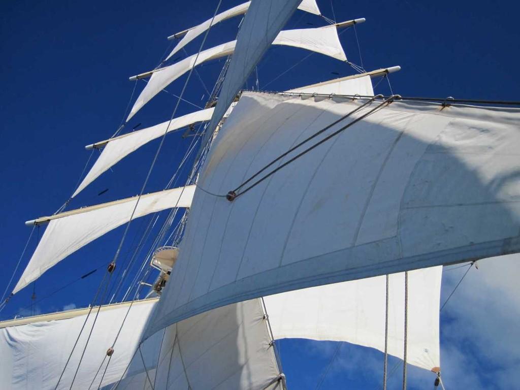 2648_27 Okt 2010_Star Flyer_under full sail