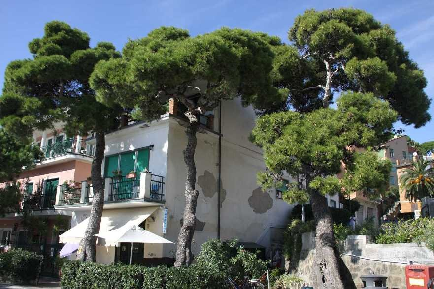 0364_08 Okt 2013_Cinque-Terre_Monterosso-al-Mare