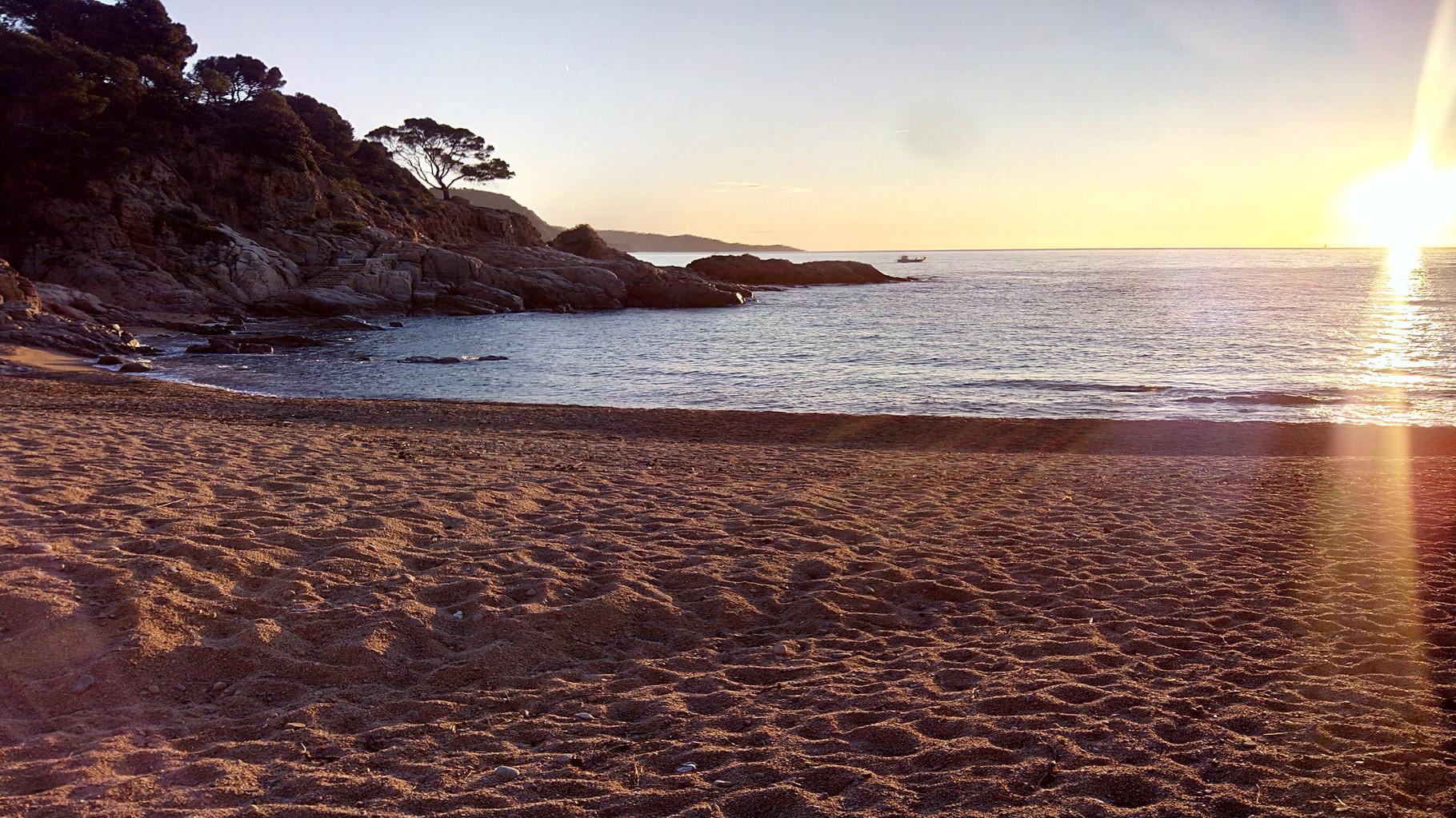 Cala Salionç beach