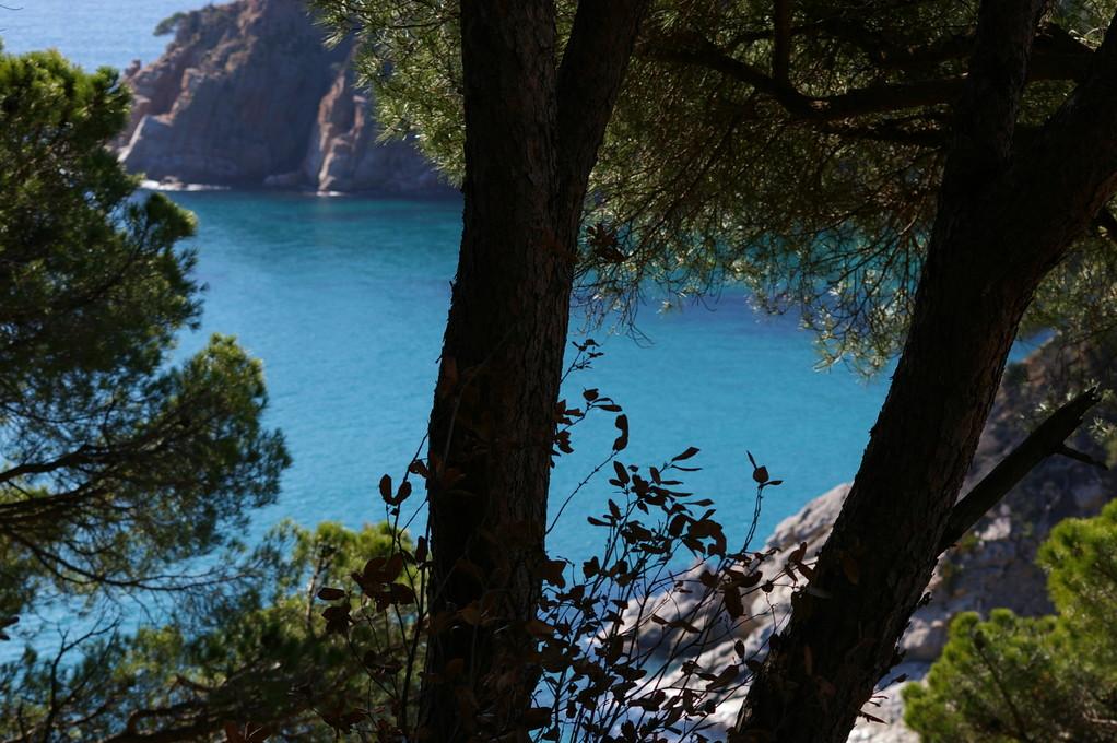vue sur la mer de Santa María de Llorell