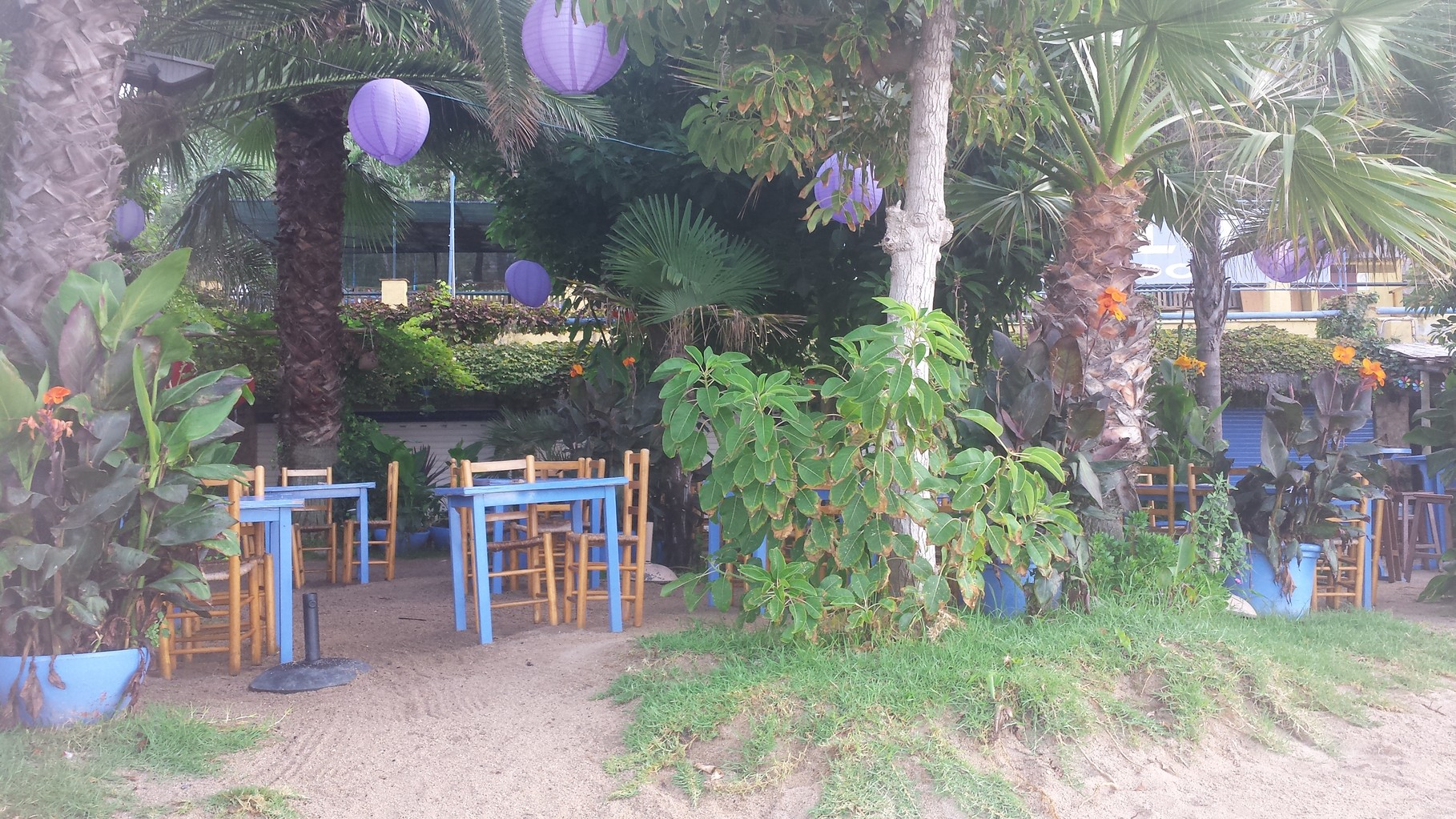 Bar restaurant Beach Club in beach
