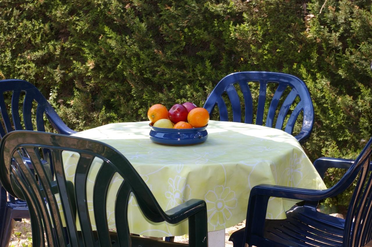Casa de vacaciones con piscina en Tossa de Mar, jardín con frutas