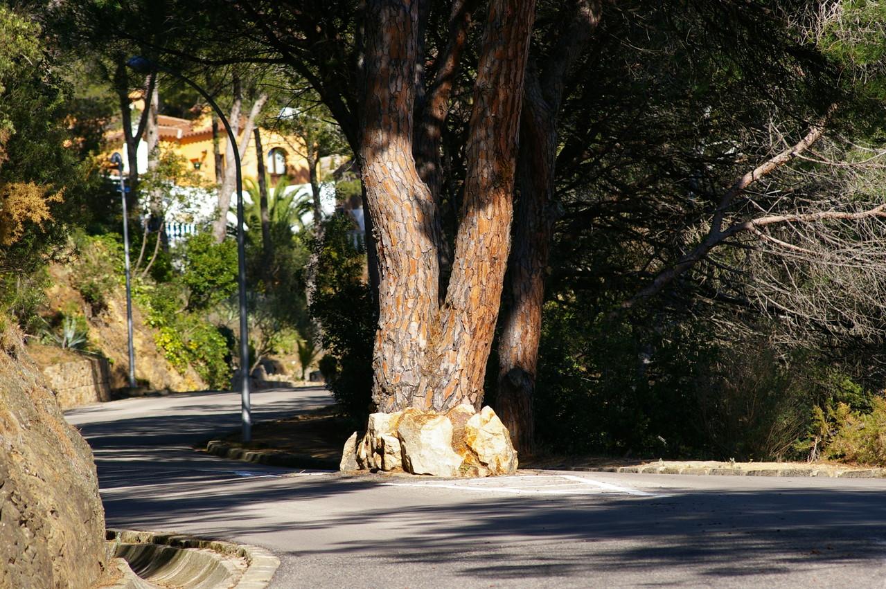 Rue de Santa María de Llorell