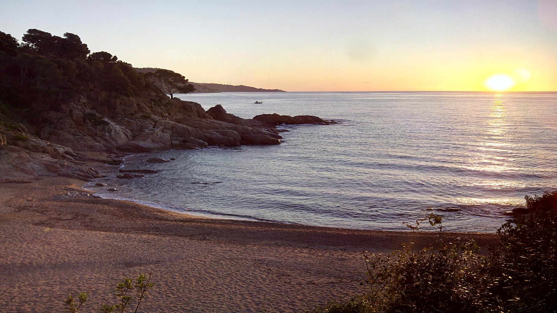 playa de Cala Salionç