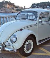 Amigos del Volkswagen