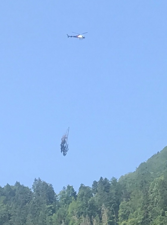 Dass ganze Tannen mit dem Heli durch die Luft geflogen werden, sah ich erstmals.