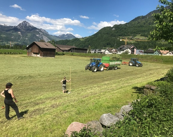 Traktor mit Heuwender und Mädliapparat, Traktor mit Heulader und mächtigem Heuwagen und die fleissigen Nachrecherinnen.