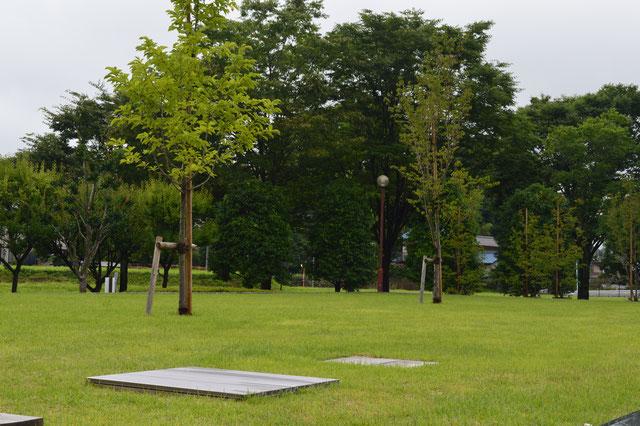 永代供養墓の一種・樹木葬