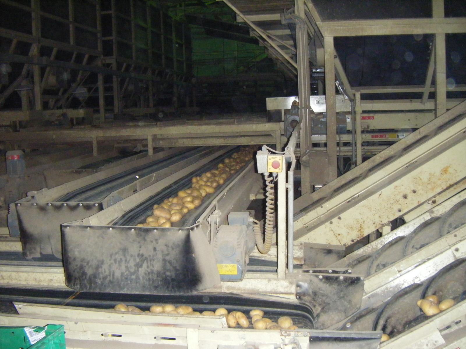 Bunkeraustragebänder und verteilung