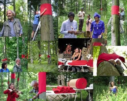 """bleeding trees"" Fotomappe - Dokumentationsbilder"