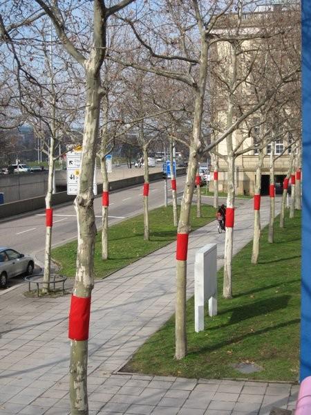"""""""bleeding trees"""" in Stuttgart"""