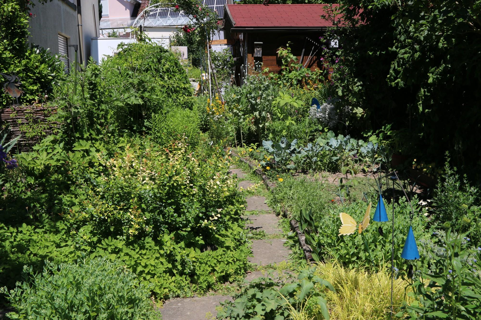 Das ist der Garten von Frau Grotz