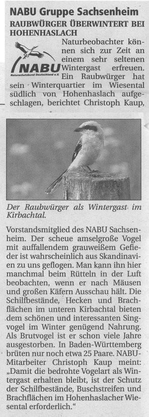 Nachrichtenblatt 2008/1 über Raubwürger in Sachsenheim