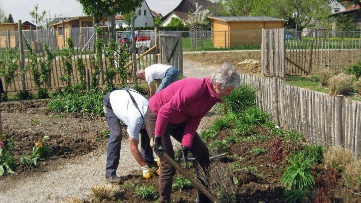 Frühjahrspflanzungen im Gärtle der Gartenfreunde Schwäbisch Gmünd