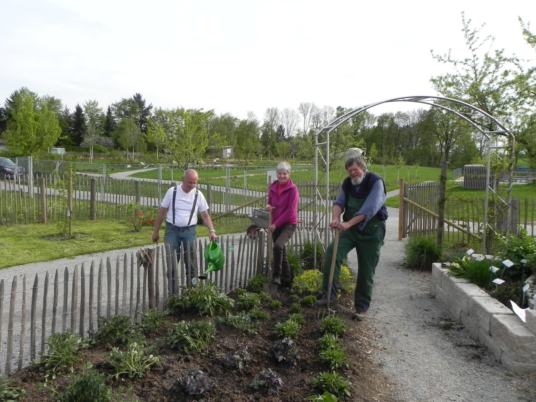 Der Garten wird für den Gmünder Sommer 2015 wieder auf Vordermann gebracht