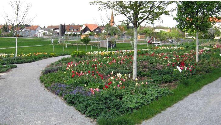 Begrünung im Landschaftspark Wetzgau