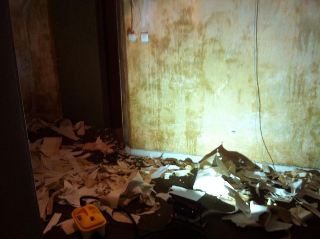 Die (fast) unendliche Geschichte....Tapeten im ganzen Haus entfernen