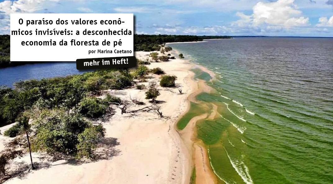 A região Amazônica detém a maior floresta tropical em extensão do mundo. Sua importância está conectada a sua grandeza, visto que além da extensão a região também possui uma das maiores reservas de biodiversidade.